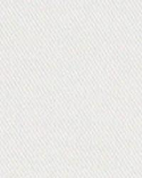Beige Solid Color Denim Fabric  3454 NATURAL WHITE