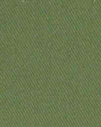 Green Solid Color Denim Fabric  3516 FERN