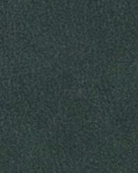 Charlotte Fabrics 7812 DARK GREEN Fabric