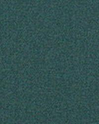 Green Solid Color Denim Fabric  9445 SPRUCE