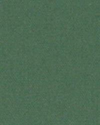 Green Solid Color Denim Fabric  9447 CYPRESS