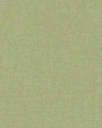 Green Solid Color Denim Fabric  9462 FERN
