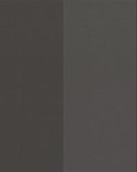 Black Wide Stripe Fabric  Beethoven Graphite