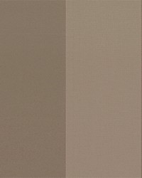 Brown Wide Stripe Fabric  Beethoven Porcini