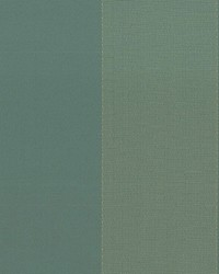 Green Wide Stripe Fabric  Beethoven Verdigris