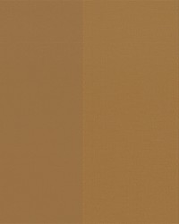 Brown Wide Stripe Fabric  Beethoven toast