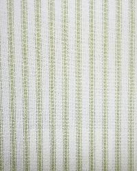 Green Ticking Fabric Woven 228 Fern