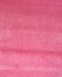 Pink Silk Velvet Fabric  Grand Silk Velvet 810