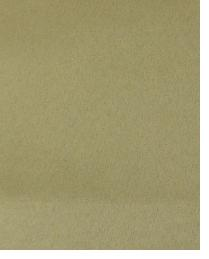 14041 Sandstone by  Duralee