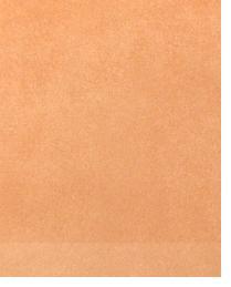 14041 Terracotta by  Duralee