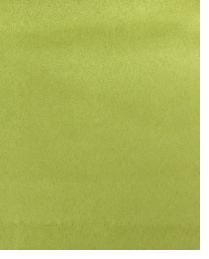 14470 Mint Leaf by  Duralee