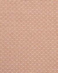 Allegro Ballet Pink by