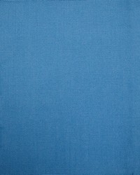 Barry Bluebird by