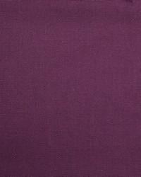 Barry Purple by