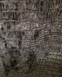 Crocodile Platinum Velvet by