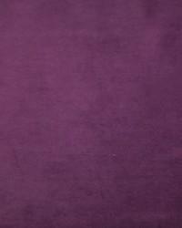 Plush 29 Velvet by