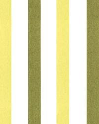 Cotton Awning Citrus Green by