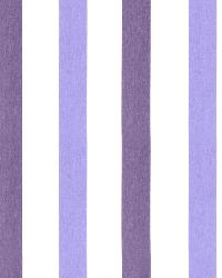 Cotton Awning Purple by