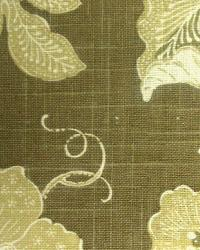 Milkweed Toile Chocolate by  In Stock
