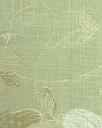 Milkweed Toile Sage by  In Stock