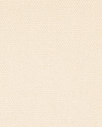 Beige Solid Color Denim Fabric  Wrangler Ecru