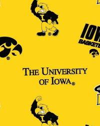 Iowa Hawkeyes Cotton Print - Yellow by