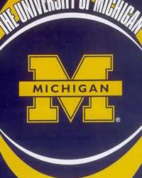College Fleece Fabric  Michigan Fleece Panel