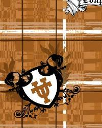 Texas Longhorns Plaid Cotton Print by