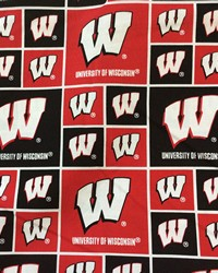 University Of Wisconsin WIS 020 by