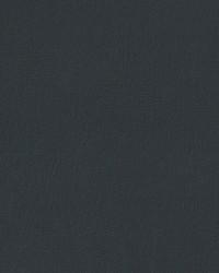 Auto Revolution Caprice Dark Slate Vinyl by