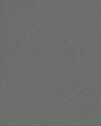 Auto Revolution Caprice Light Slate Vinyl by