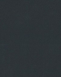 Auto Revolution Caprice Blk Vinyl by
