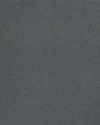 Auto Revolution Caprice Medium Slate Vinyl by