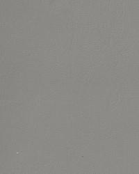 Auto Revolution Caprice Light Graystone Vinyl by