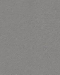 Auto Revolution Corinthian Light Gray Vinyl by
