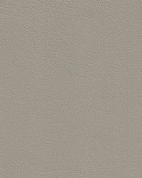 Auto Revolution CorinthianShale Vinyl by