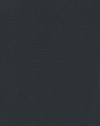 Auto Revolution Corinthian Ebony Vinyl by