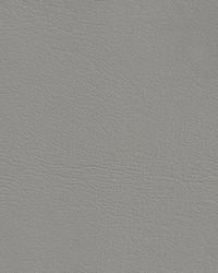 Auto Revolution Corinthian Titanium Vinyl by