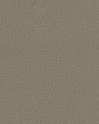 Auto Revolution G-Grain Medium Parchment Vinyl by