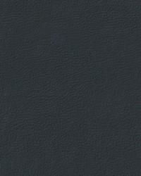 Auto Revolution Longitude Ebony Vinyl by