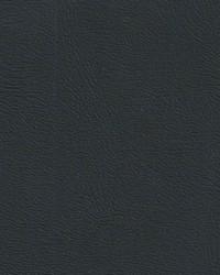 Auto Revolution Monticello Black Vinyl by