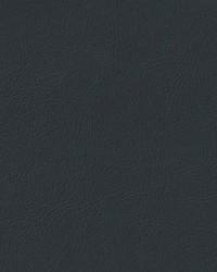 Auto Revolution Sierra Ebony Vinyl by
