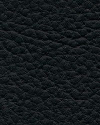 Xtreme 601 Black by