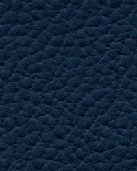 Xtreme 603 Navy Blue by