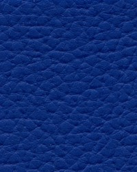 Xtreme 612 Royal Blue by
