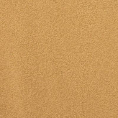 Garrett Leather Fabrics Chatham Cornsilk Search Results