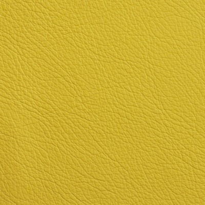 Garrett Leather Fabrics Chatham Chartreuse Search Results