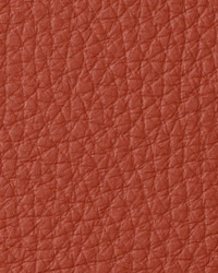 Torino Rust Leather by