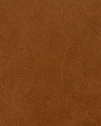 Vintage Buckskin Leather by