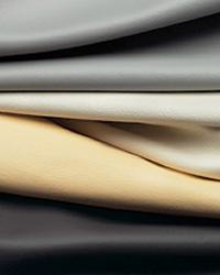 Caressa Leather                          Fabric